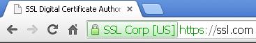 ssl hosting